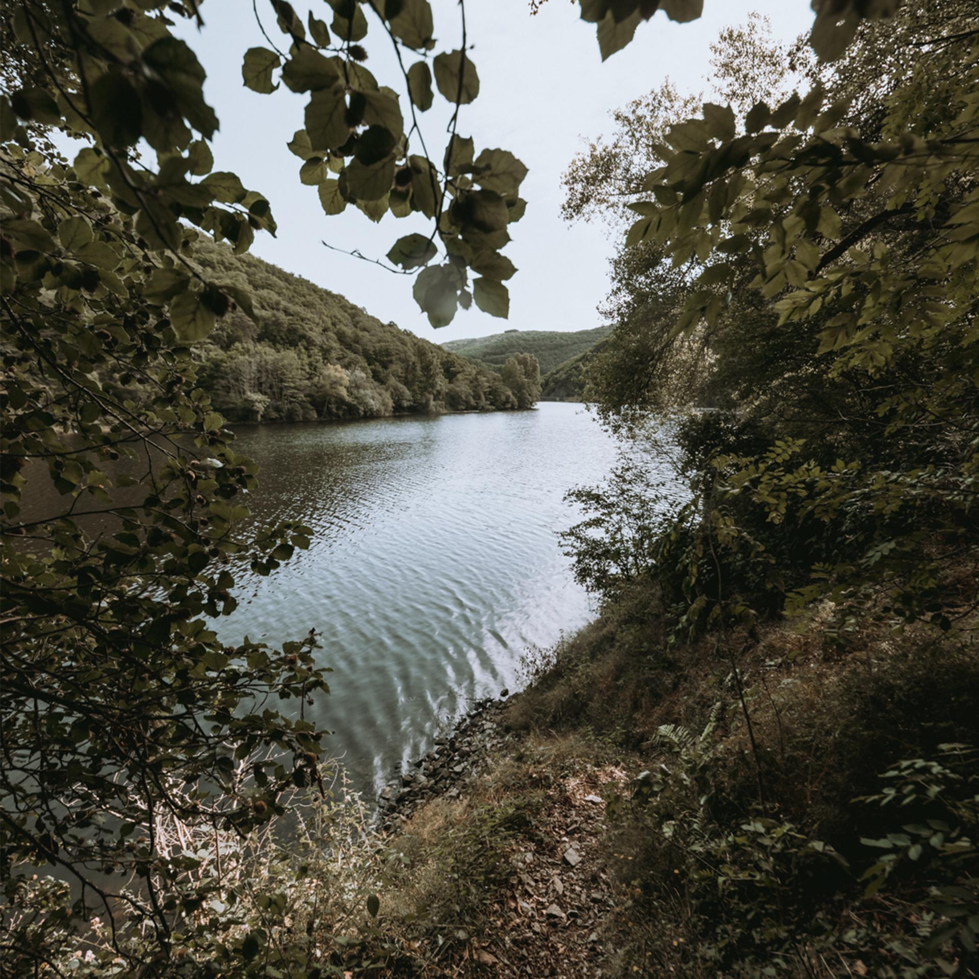Road Trip en Auvergne